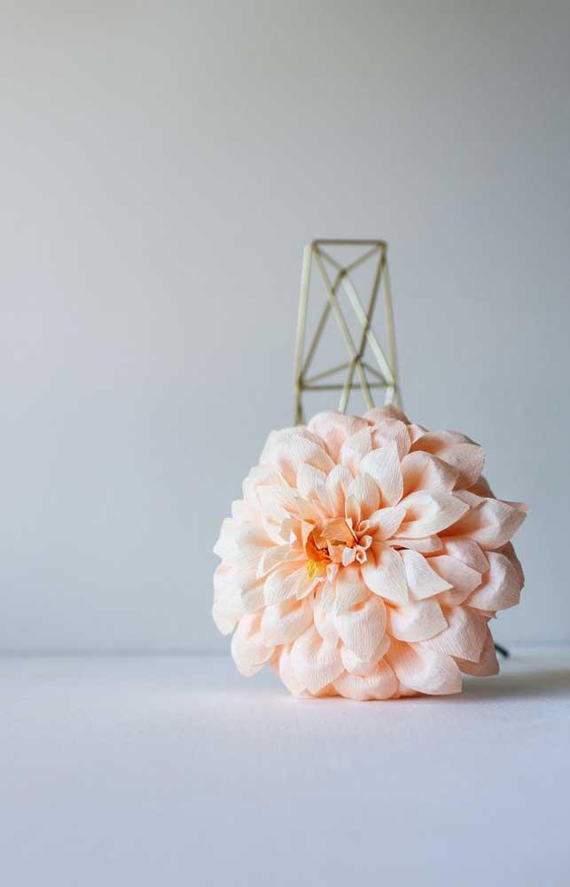 A beleza simples e singela da Dália a coloca nessa lista das flores mais lindas; delicada e de aparência frágil, a Dália é perfeita para decorar momentos românticos e especiais