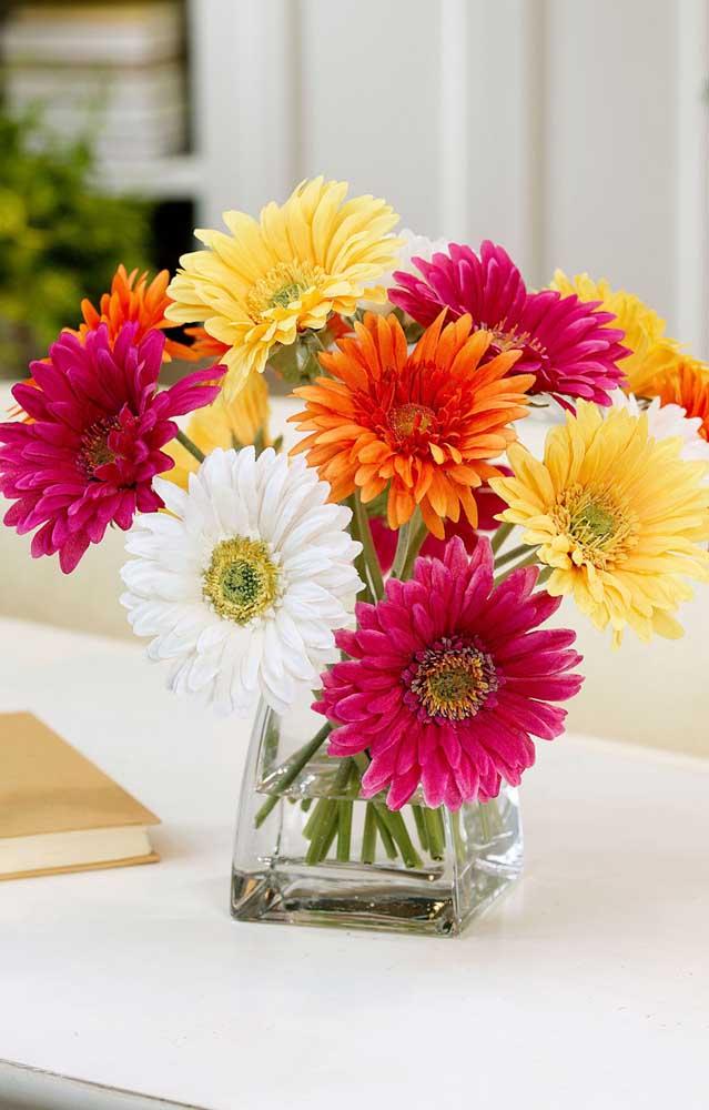 A graciosa e alegre Gérbera é uma das flores lindas mais populares que existe, especialmente quando o assunto é decoração de festas