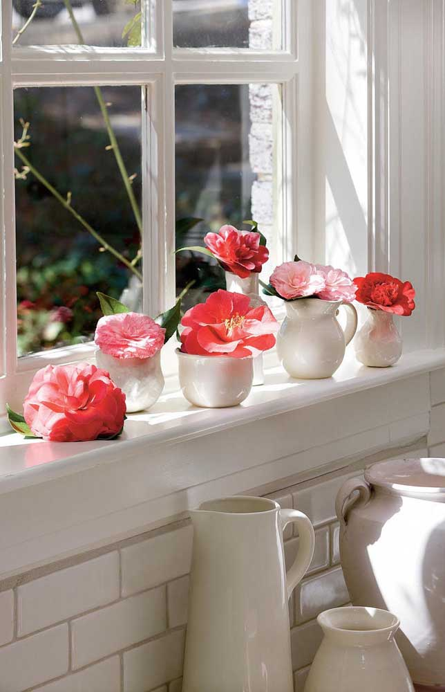 A Middlesmist vermelha está na lista das flores mais raras do mundo; o formato simétrico perfeito de suas pétalas garante a essa espécie uma beleza de tirar o folego
