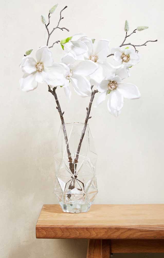 Magnólia: a flor da doçura, da simpatia e da perseverança, além, é claro, dona de uma beleza indescritível