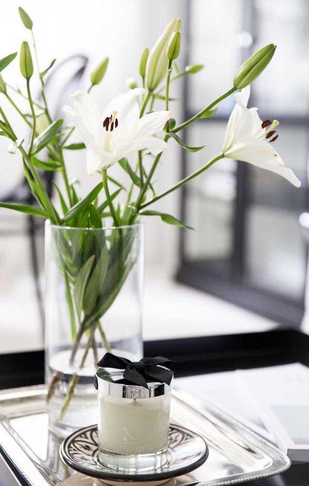 Como falar de flores lindas sem citar o Lírio? Essa é uma das espécies mais bonitas e exóticas que você pode imaginar, sem contar que a flor é muito aromática