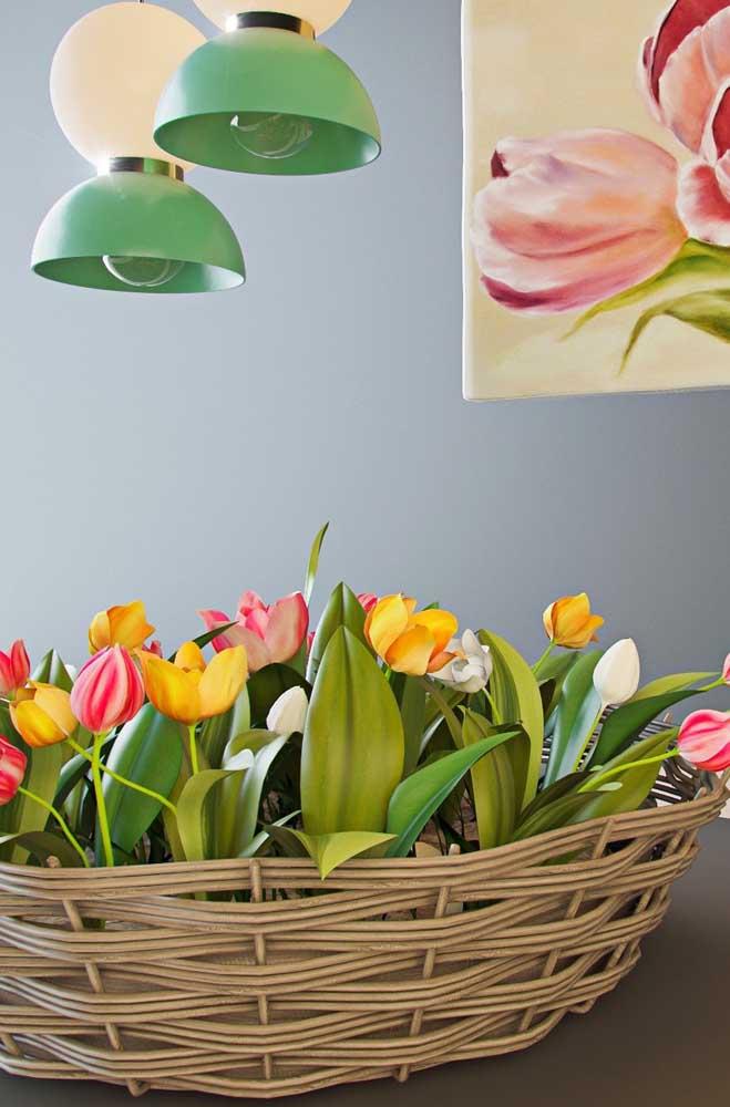 Típica dos países frios, a Tulipa é uma flor de rara beleza e que proporciona um espetáculo visual no período da sua floração