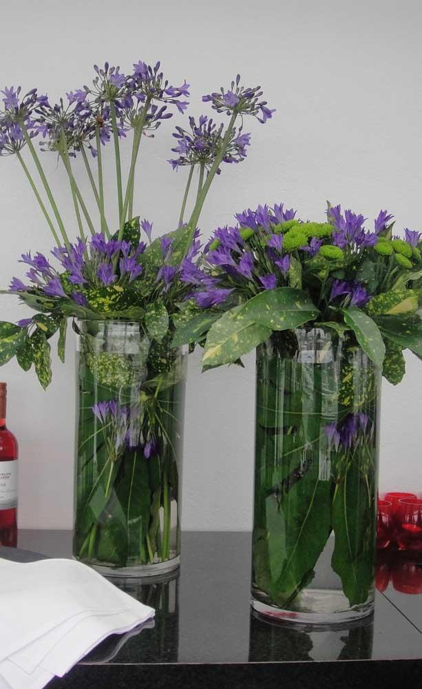 Para os apreciadores de flores rústicas, a Agapanto é um deleite para os olhos; repare na delicadeza das pequenas pétalas, apesar da aparência rústica