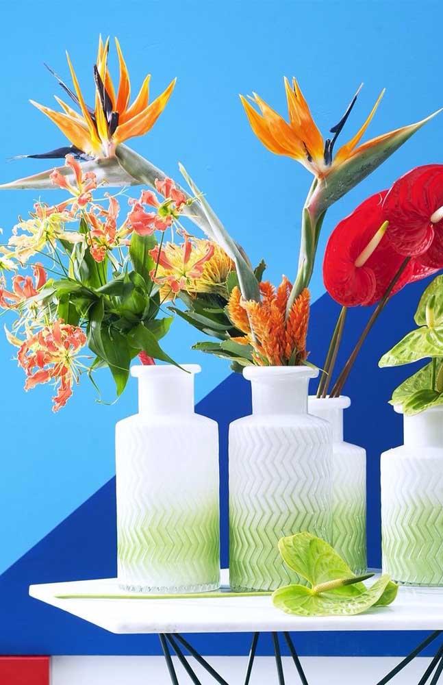 Os apaixonados por flores tropicais já devem conhecer a Estrelícia, ou pássaro do paraíso, essa flor exótica e cheia de cores vivas é um show de vida e alegria por onde passa