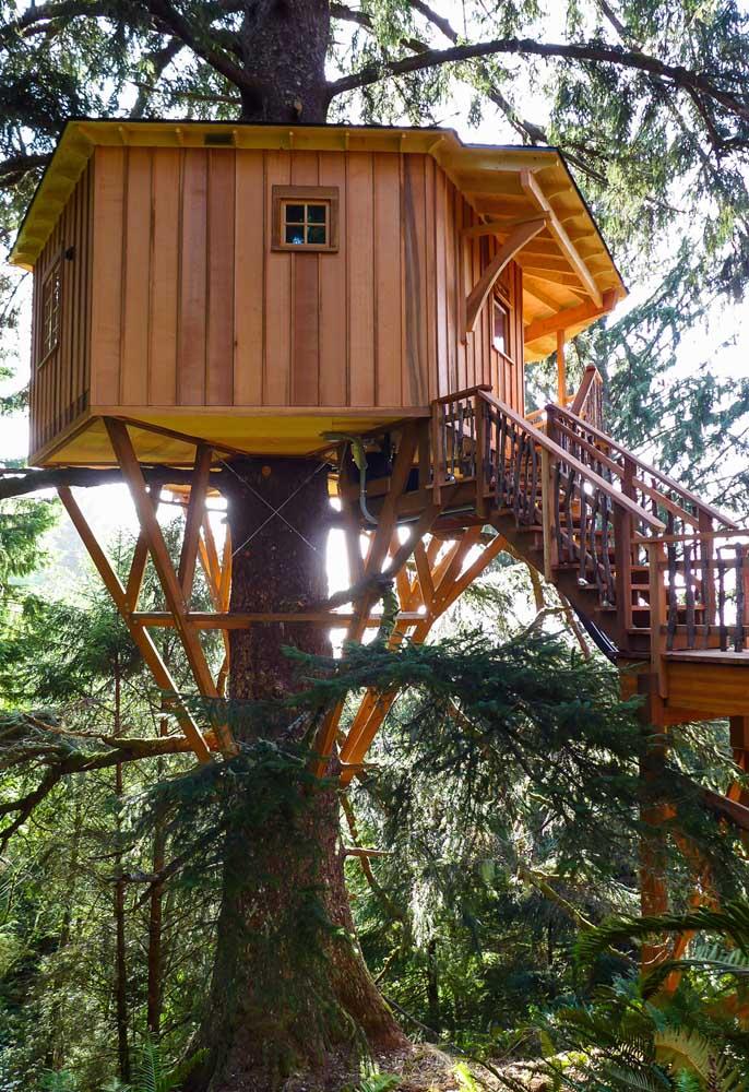 Esse modelo de casa na árvore é mais tradicional, o que diferencia é o acesso feito por uma escada normal que a deixa mais segura.