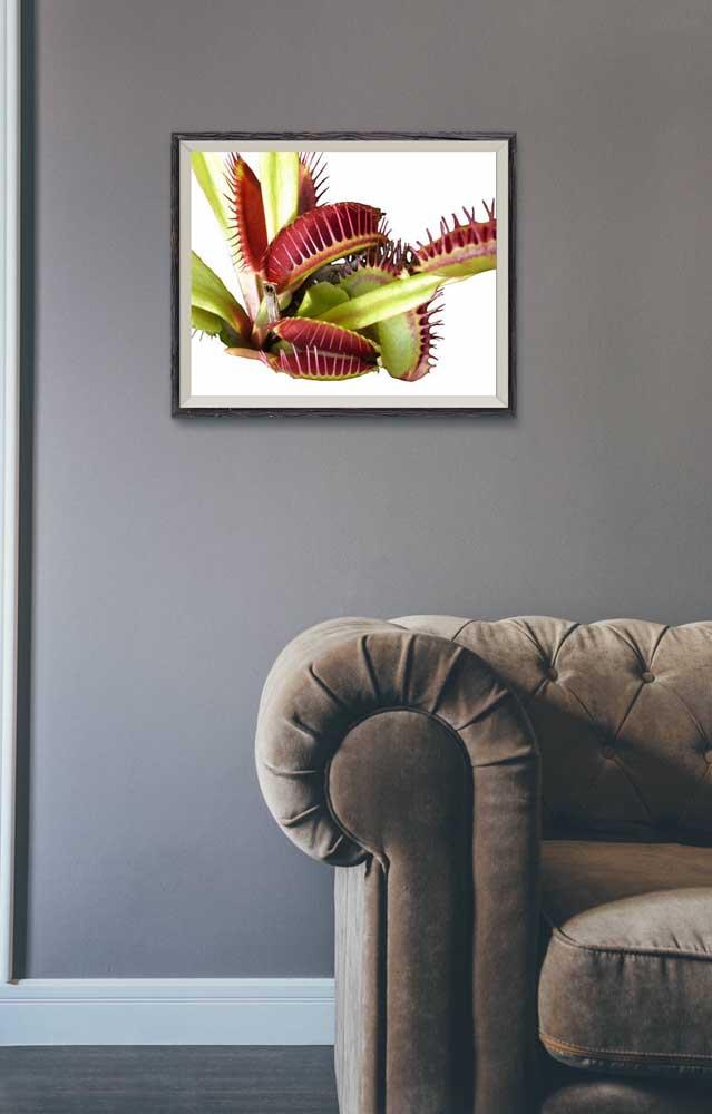 E que tal um quadro realista de Dioneias para decorar a sala de estar?