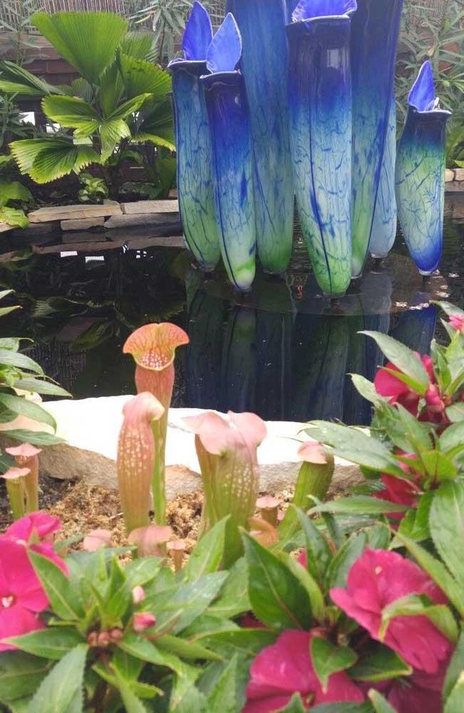 O formato em jarra da Darlingotnia Californica permite que a planta capture animais um pouco maiores do que insetos