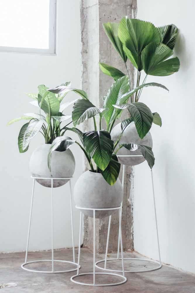As jiboias ficaram lindas nesses vasos reciclados com pintura em degradê