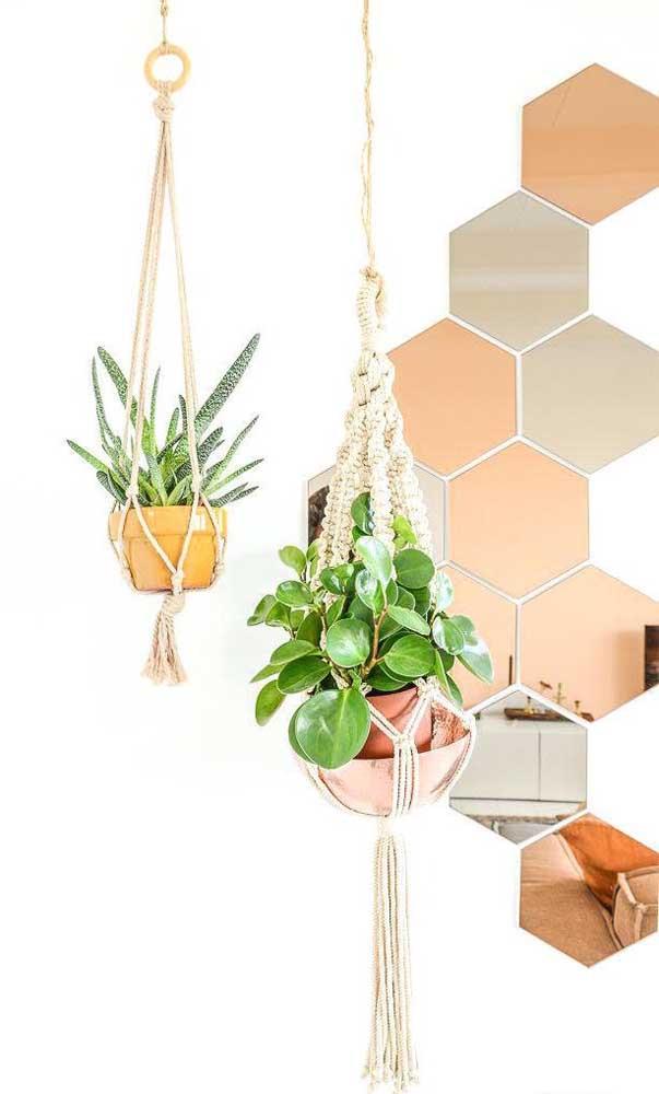 As plantas completam como ninguém a decoração com espelhos bronze