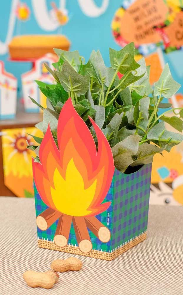 Uma fogueira para as plantinhas da casa