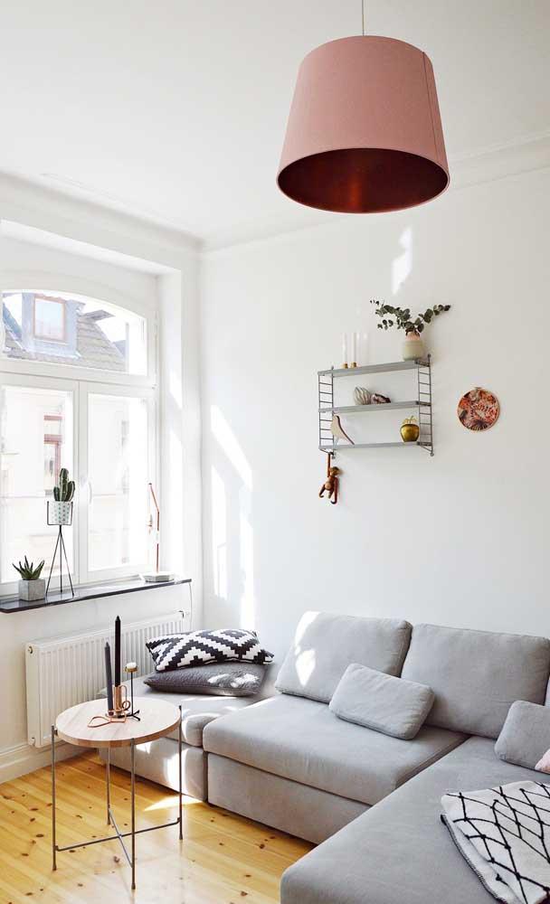A sala pequena super iluminada apostou em um sofá cinza