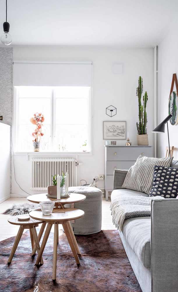 As plantas trazem vida e frescor à decoração da sala pequena