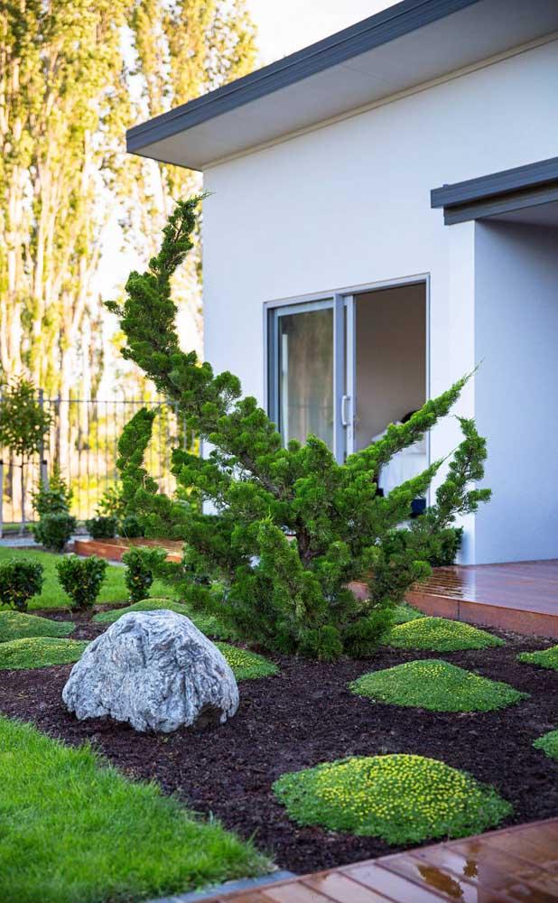 Se a intenção for criar um jardim com Kaizukas de estilo oriental aposte também em pedras e caminhos