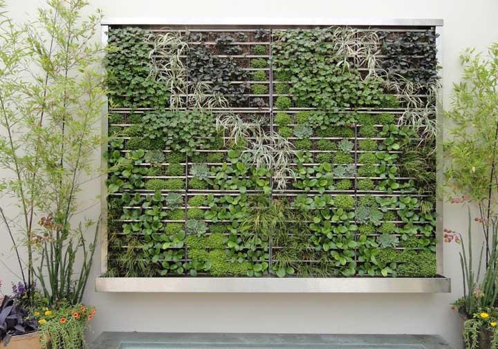 Muro com jardim vertical: moderno e ecológico