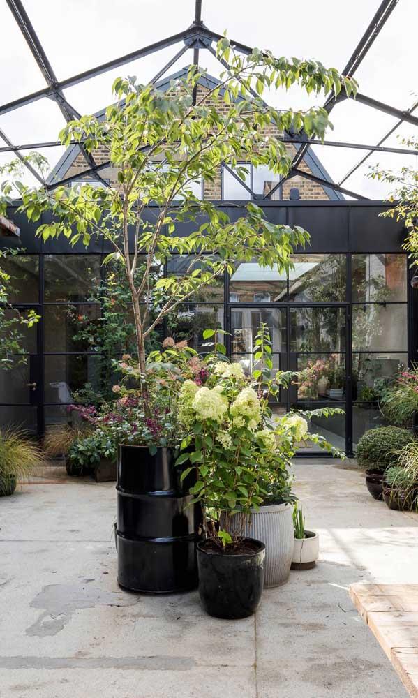 Na área externa da casa, o tonel pode ser usado como vaso para plantas grandes