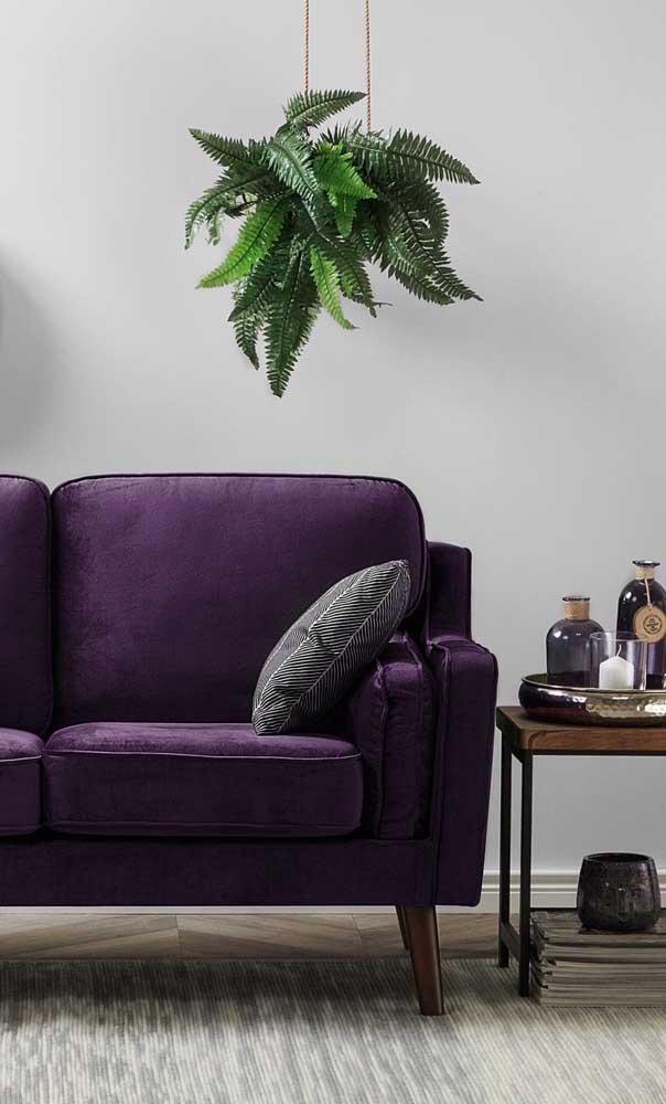 Um pouco de verde das plantinhas para contrastar com o roxo do sofá