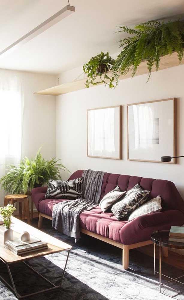 Uma sala bem iluminada decorada com sofá roxo e muitas plantas