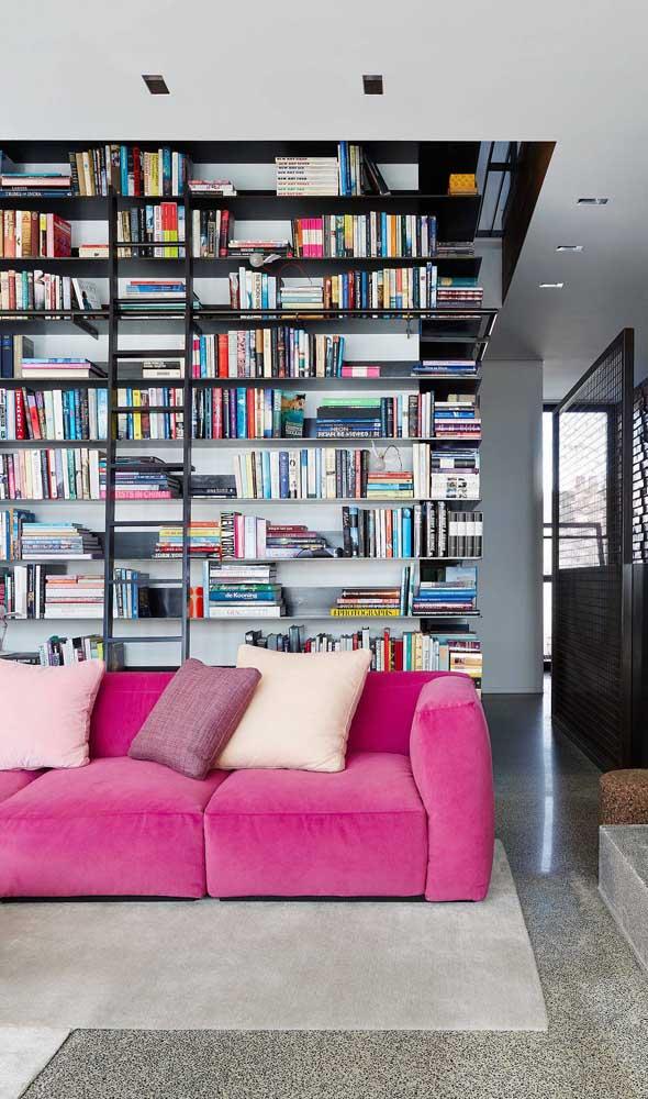 Magenta em meio aos livros da casa
