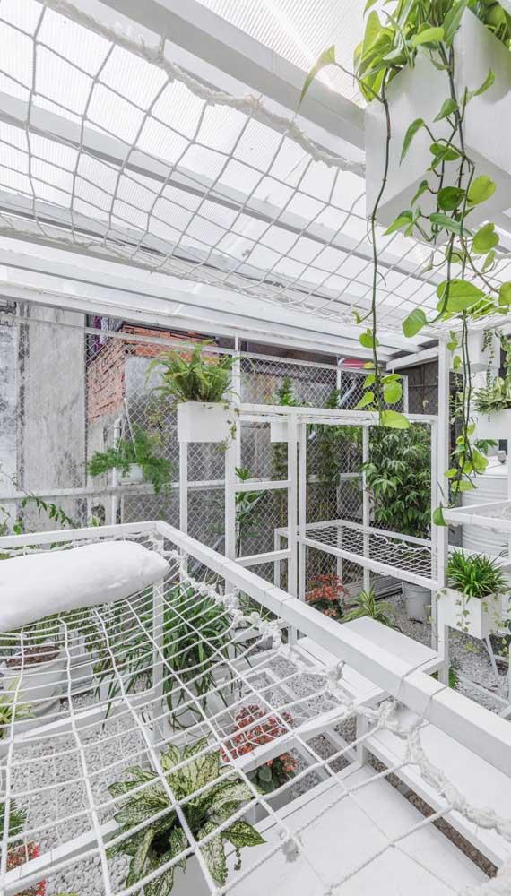 Jardim com redes de proteção: uma forma de manter as plantinhas a salvo dos animais