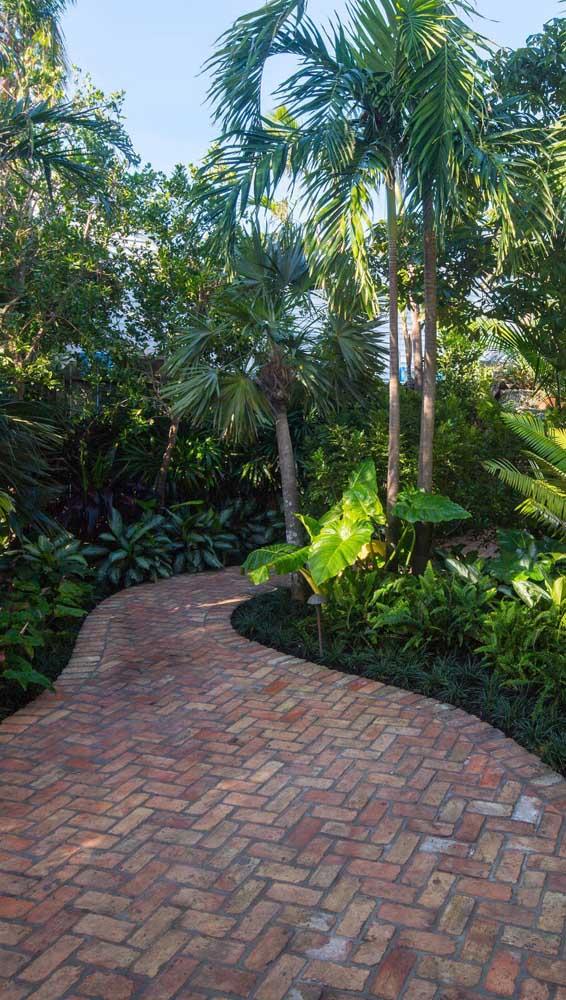Caminho de piso intertravado em meio ao jardim tropical