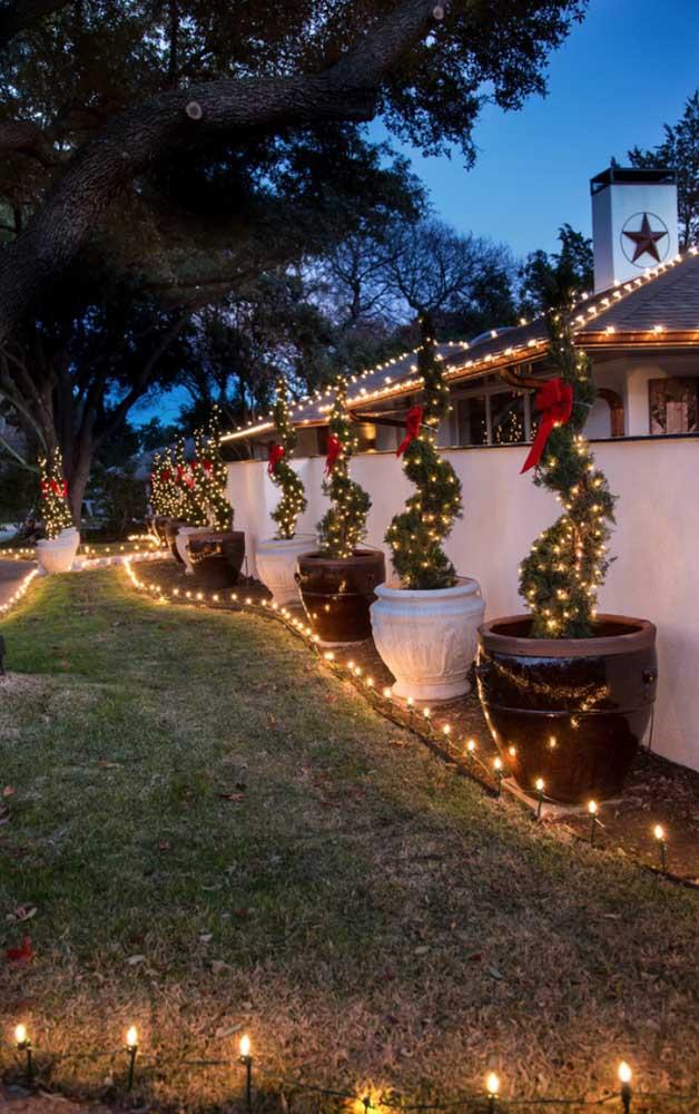 Luzes de natal adornando o jardim, as plantas e o caminho de entrada da casa