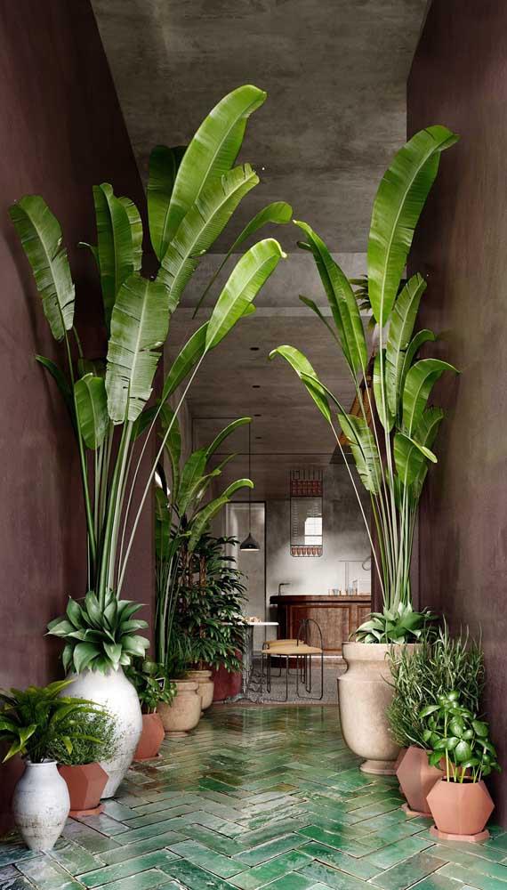 Para criar ambientes com cara de natureza aposte no uso do marsala combinado ao verde das plantas