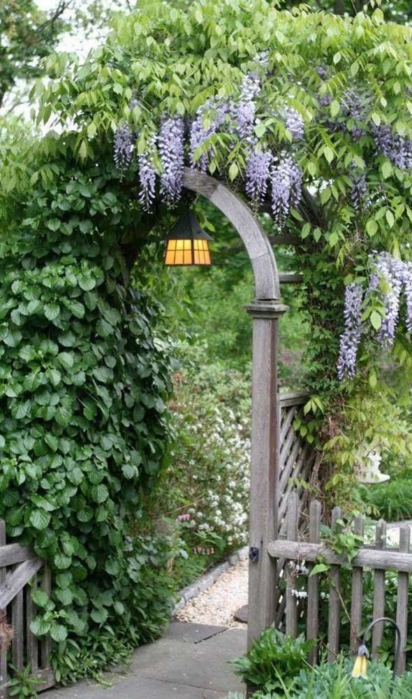 Glicínias lilás embelezam a entrada desse caramanchão em arco