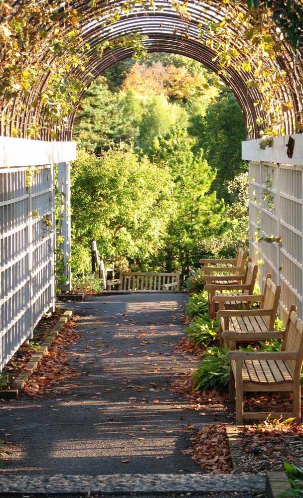 O caramanchão pode ser usado para ligar uma área a outra da casa, servindo como caminho