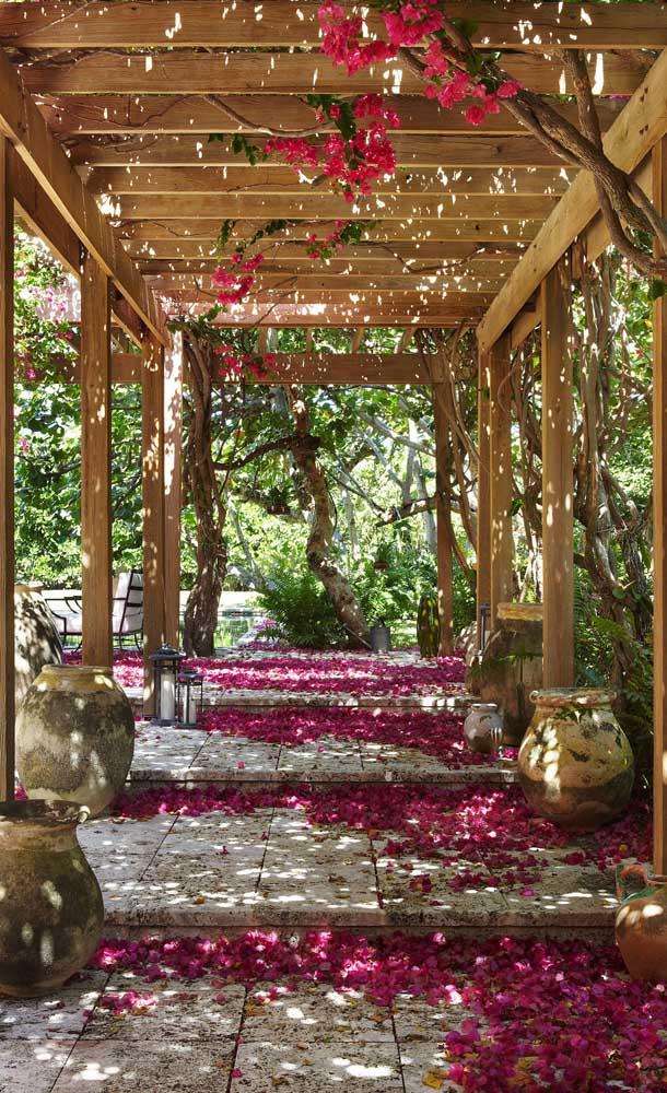 As flores da primavera formam um tapete sob o caramanchão de madeira