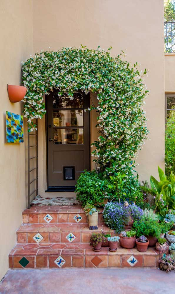 Caramanchão na porta de entrada da casa recheado de pequenas e delicadas flores brancas