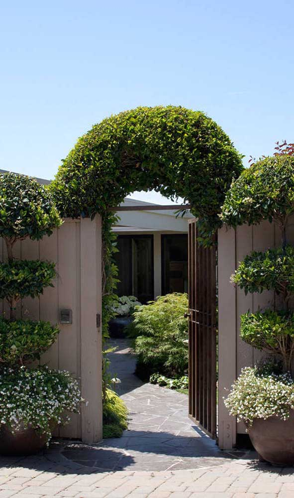 Caramanchão em arco completamente envolto pela planta trepadeira