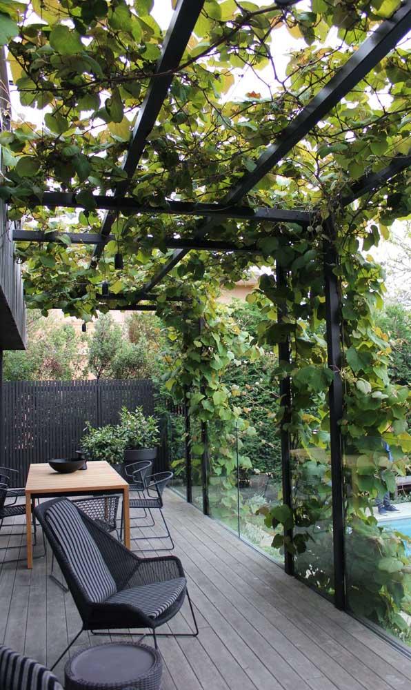 A estrutura preta do caramanchão se harmoniza diretamente com os demais elementos da varanda