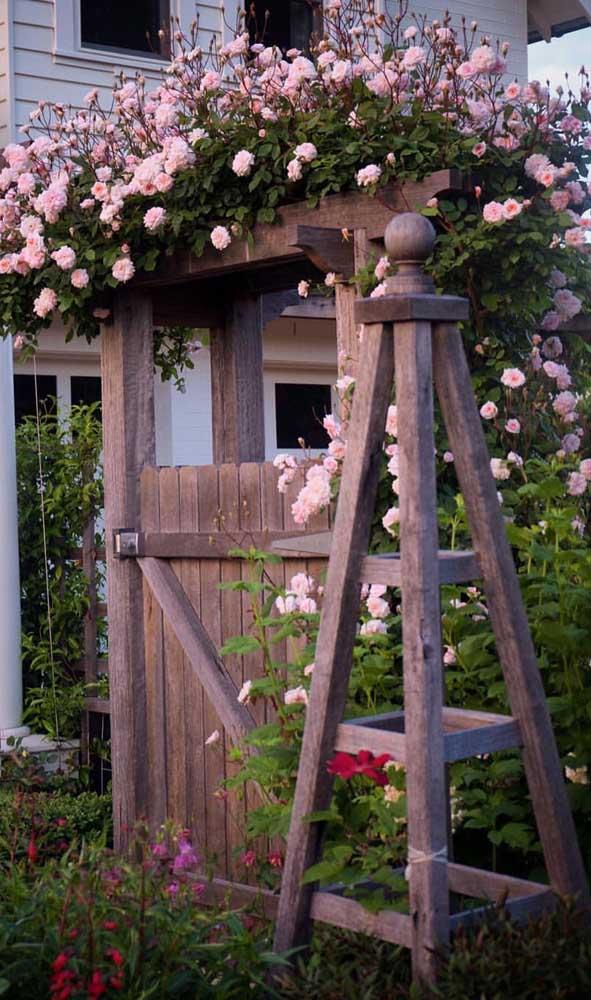 Rosas cor de rosa para esse caramanchão rústico. Uma boa pedida para entradas de chácaras