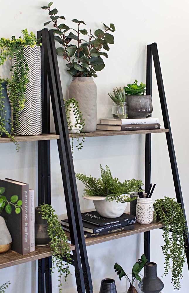 Estante escada para plantas