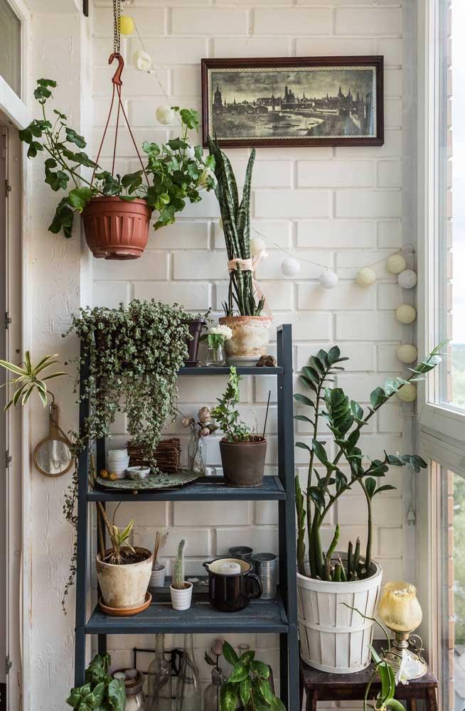 Na varanda, a estante escada é o lugar preferido para as plantinhas