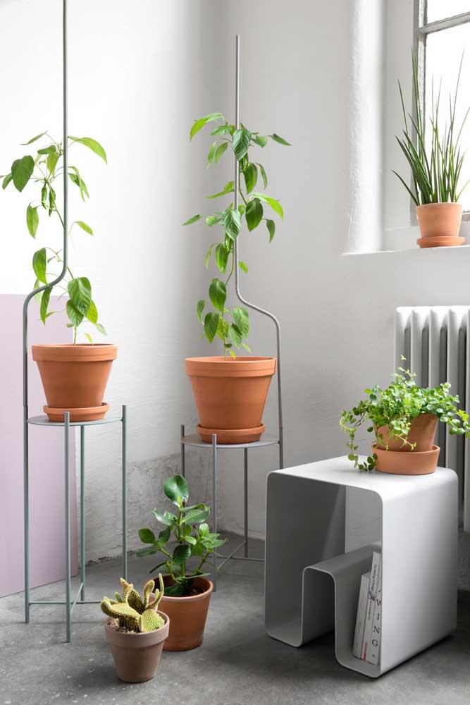 Muito legal essa ideia de suporte para plantas trepadeiras. Repare que ele possui uma estrutura onde a planta pode se agarrar para subir