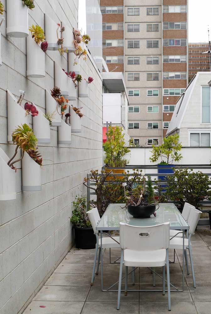 Aqui, os canos de PVC se tornam o suporte ideal para a horta vertical