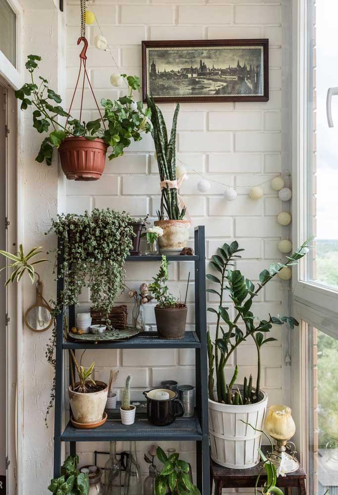 Organize as plantinhas da sua varanda com um suporte de madeira estilo escada