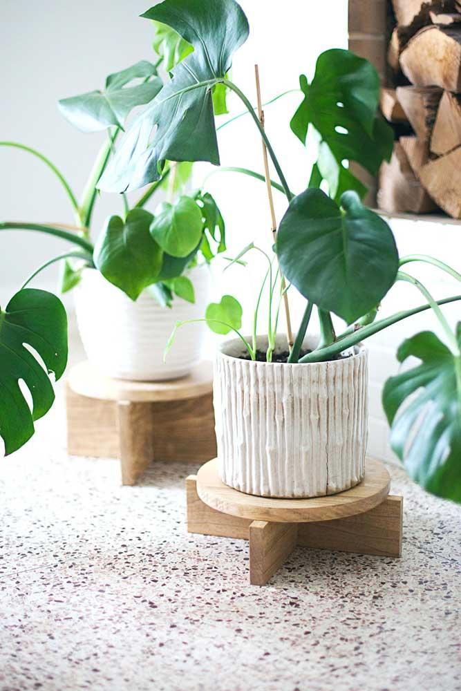 Suporte baixinho para plantas para ser usado sobre mesas, aparadores e outras mobílias da casa
