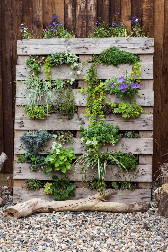 Suporte para plantas feito de pallet: perfeito para um ambiente rústico