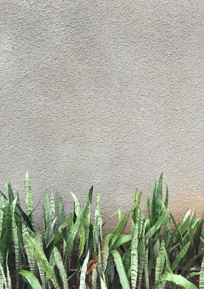 O bom e velho chapisco! A melhor opção de textura de parede para área externa