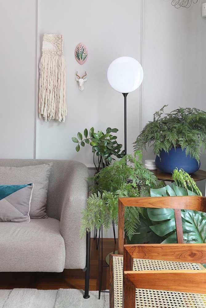 Que tal uma urban jungle sobre a mesa de canto da sala?