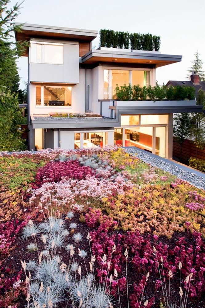 Ter um jardim em casa purifica e refresca o ar