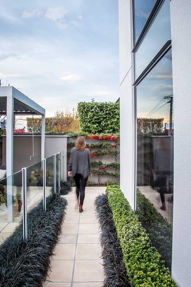 Buchinha e grama preta formam esse projeto de mini jardim