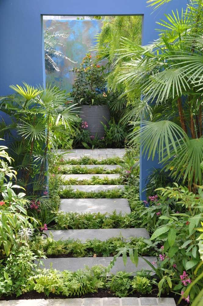 O tom azul da parede criou o pano de fundo perfeito para esse jardim residencial