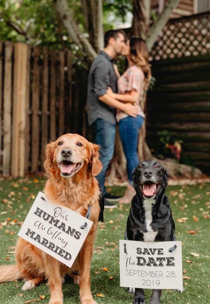 Um jeito fofo de anunciar o Save the date: com os pets!
