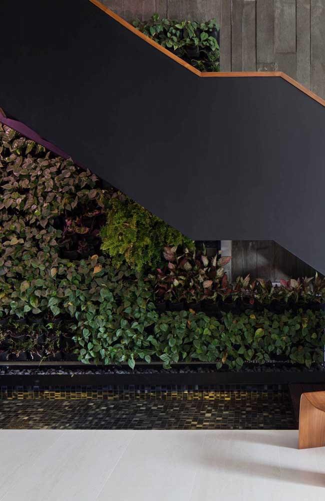 Muro inglês natural embaixo da escada. Para ficar ainda melhor, um mini lago
