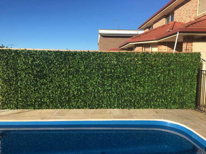 Muro inglês para área da piscina. Por aqui, bastou a trepadeira unha de gato