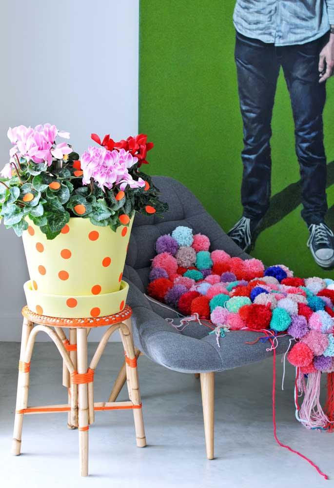 Cíclames de cores variadas decoram e alegram esse ambiente jovial