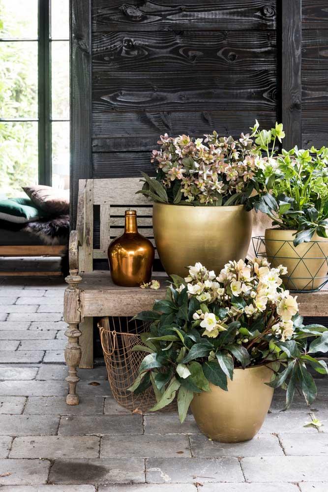 Decoração rústica com vasos de cíclame. Perfeita para um casamento ao ar livre